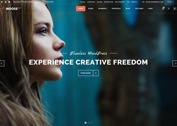 Moose – Premium Responsive Creative MultiPurpose WordPress Theme