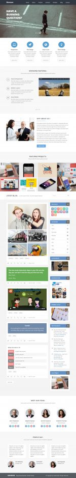Best Responsive Tumblr Business Themes in 2014