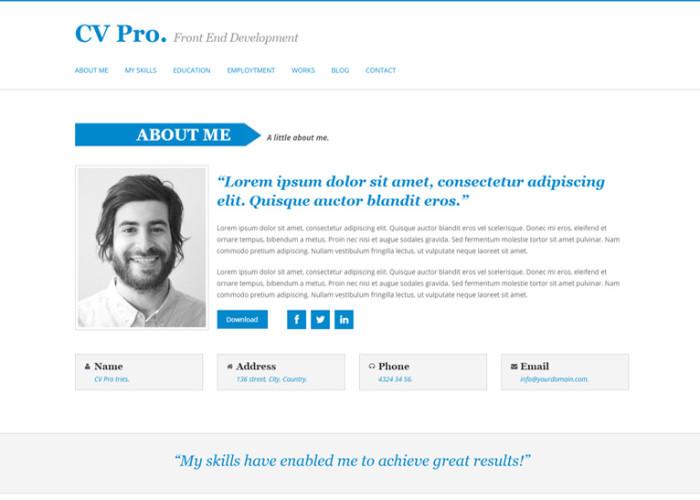 My Cv – Premium Responsive CV Drupal Theme