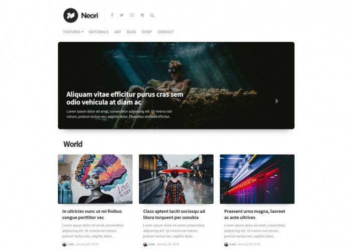 Neori – Premium Responsive News and Magazine WordPress Theme