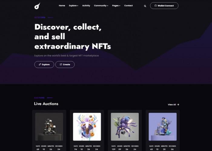 Netstorm – Premium Responsive NFT Marketplace HTML5 Template