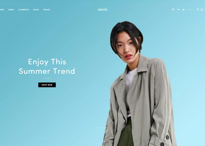 Nexio – Premium Responsive WooCommerce WordPress Theme
