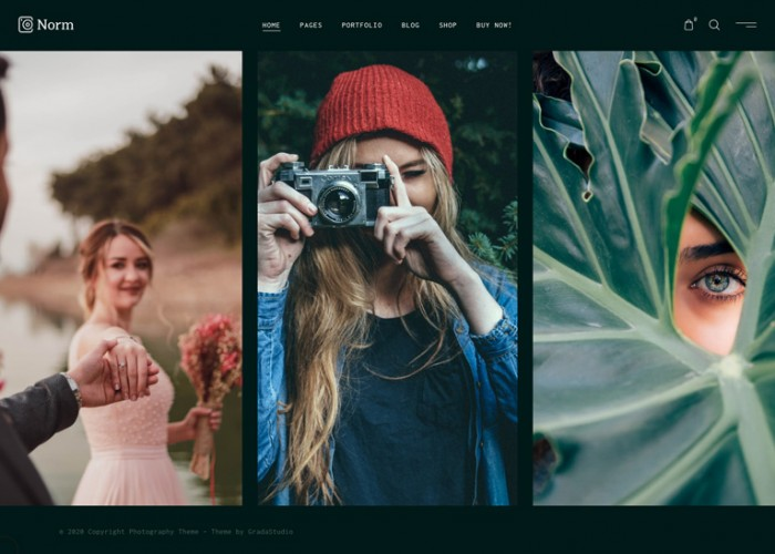 Norm – Premium Responsive Photography Elementor WordPress Theme