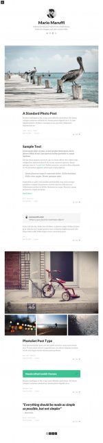 10+ Best Responsive Tumblr Blog Themes in 2014