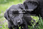 Pet Care – Premium Responsive Dog Kennels Wordpress Themes