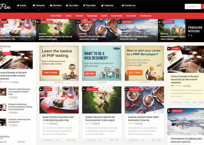 Pin – Premium Responsive Magazine / CV Resume WordPress Theme