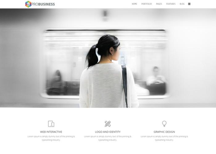 ProBusiness – Premium Responsive MultiPurpose Joomla Template