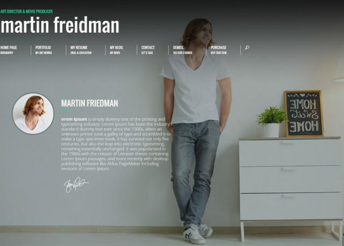 Promotion – Premium Responsive Animated CV Resume WordPress Theme