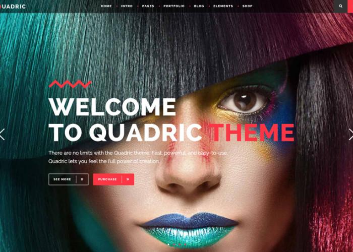 Quadric – Premium Responsive Modern WordPress Theme for Creatives