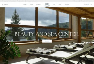 Reina – Premium Responsive Spa and Wellness WordPress Theme