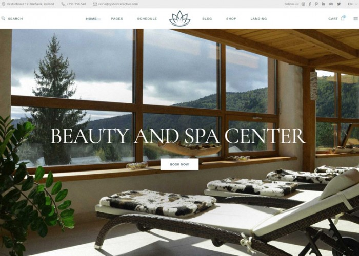 Reina – Premium Responsive Spa and Wellness WordPress Theme
