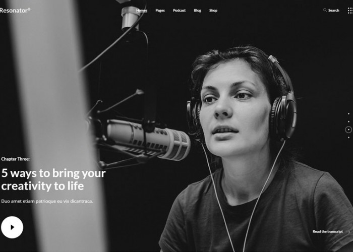 Resonator – Premium Responsive Audio Podcast WordpPress Theme