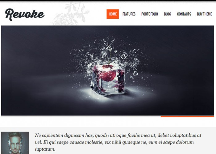 Revoke – Premium Responsive Blog & Portfolio WordPress Theme
