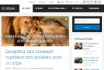 Schema – Premium Responsive Fastest SEO WordPress Theme