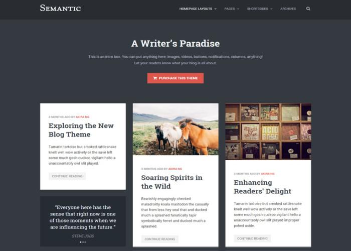 Semantic – Premium Responsive WordPress Blog Theme