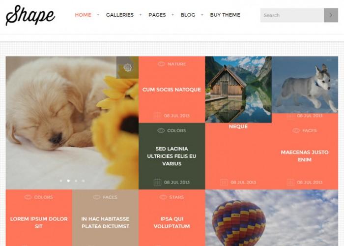 Shape – Premium Responsive Photography WordPress Theme