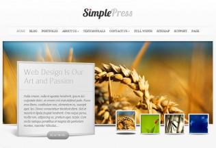 SimplePress – WordPress Premium Responsive Theme