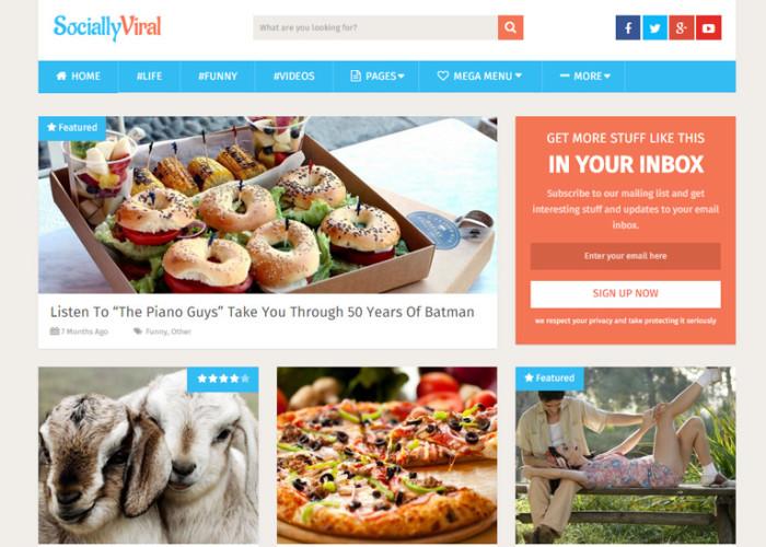 SociallyViral – Premium Responsive WordPress Theme to Boost Social Shares