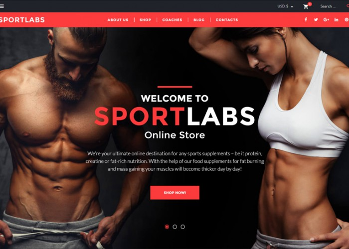 SportLabs – Premium Responsive WooCommerce WordPress Theme