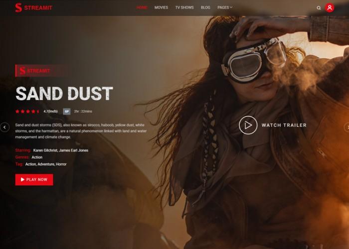 Streamit – Premium Responsive Video Streaming WordPress Theme