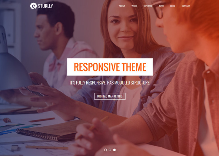 Sturlly – Premium Responsive One Page MultiPurpose HTML5 Template