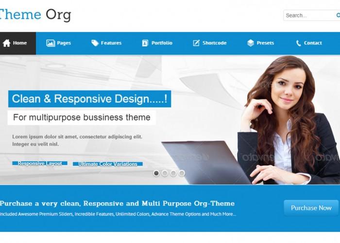 Theme-Org – Joomla Premium Responsive Template