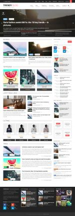 5+ Best Responsive Wordpress Review Themes 2015