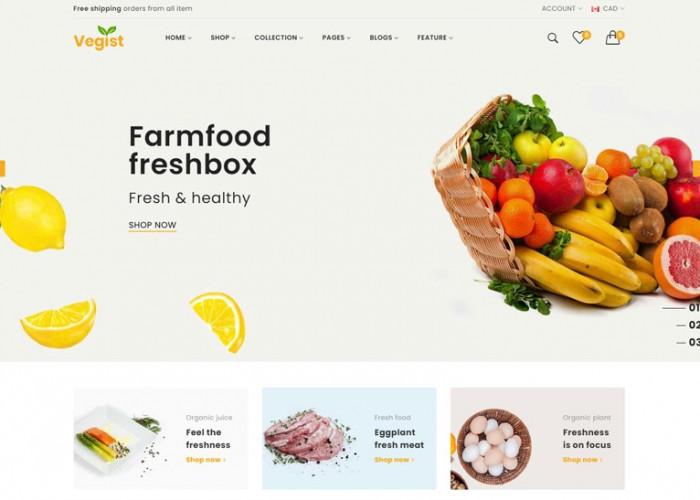 Vegist – Premium Responsive Multipurpose eCommerce HTML5 Template