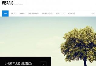 Visario – Joomla 3 Premium Responsive Theme