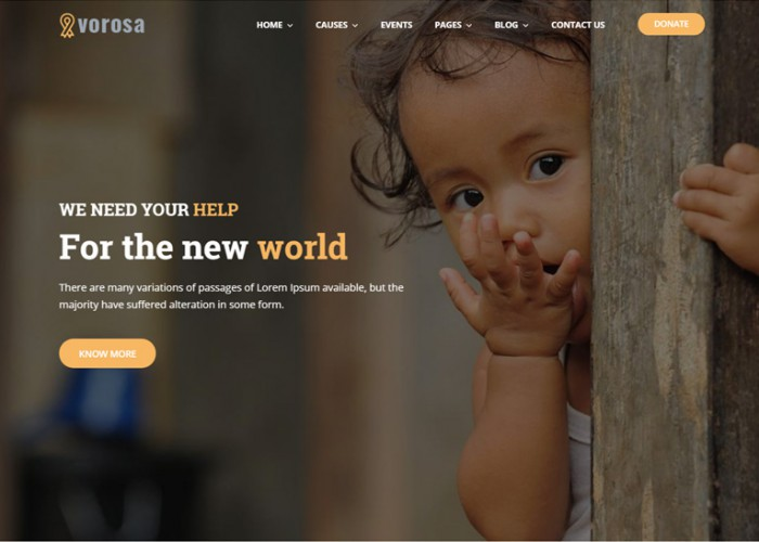 Vorosa – Premium Responsive Charity Fundraising WordPress Theme