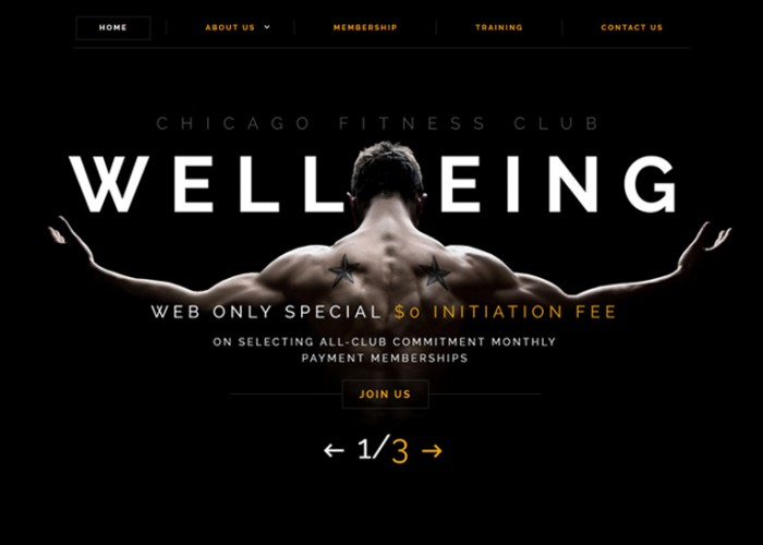 Wellbeing – Premium Responsive Fitness HTML5 Template