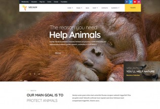 WildWorld – Premium Responsive Nonprofit & Ecology WordPress Theme