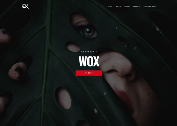 Wox – Premium Responsive One Page Portfolio WordPress Theme