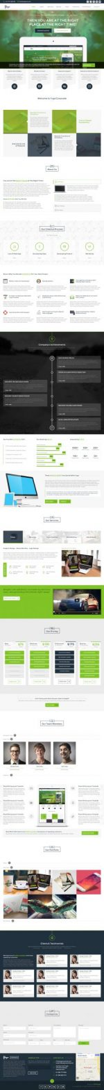 15+ Best Agency Muse Templates 2015