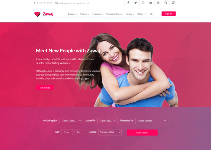 free buddypress dating themes